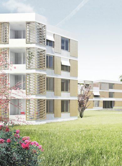 Demenzhaus+ Arlesheim, 2012